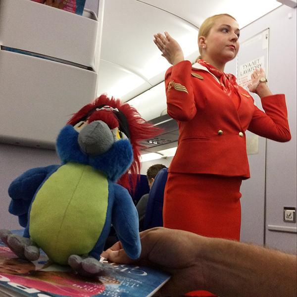 багаж, самолет, Пьер