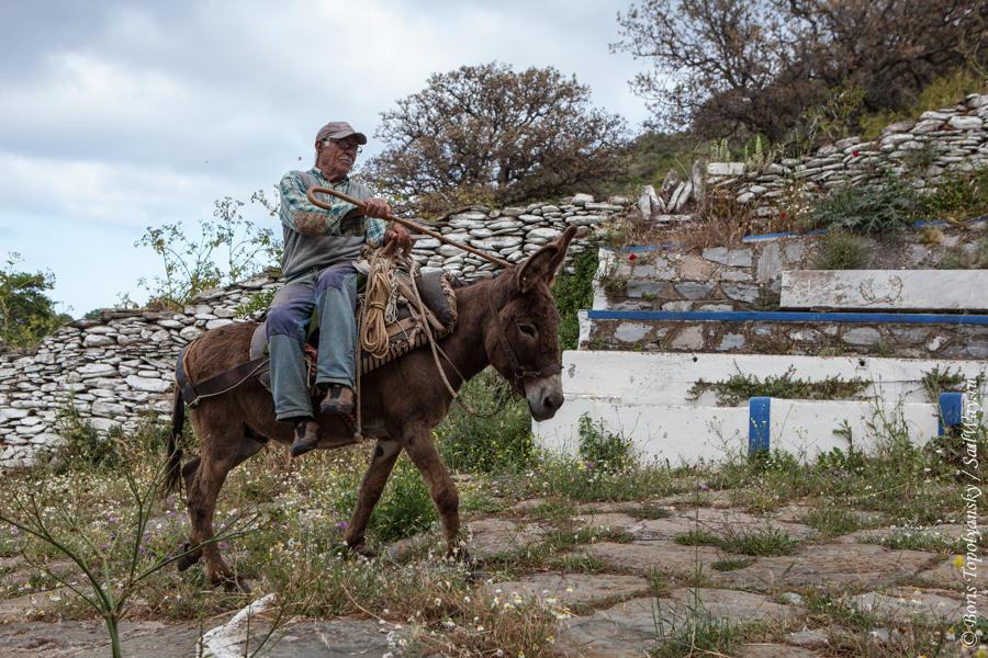 Kea_Peasant on a Donkey